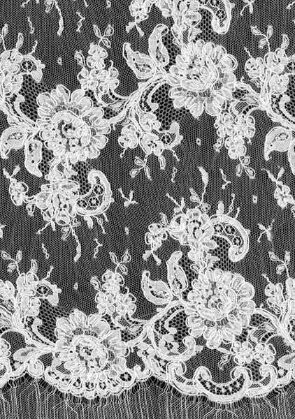 CORDED BEADED FRENCH LACE - IVORY