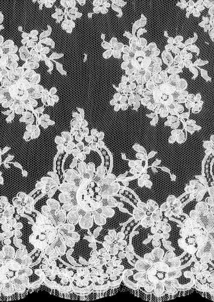CORDED FRENCH LACE - IVORY
