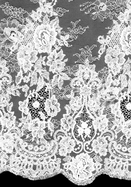 EMBROIDERED LACE - IVORY